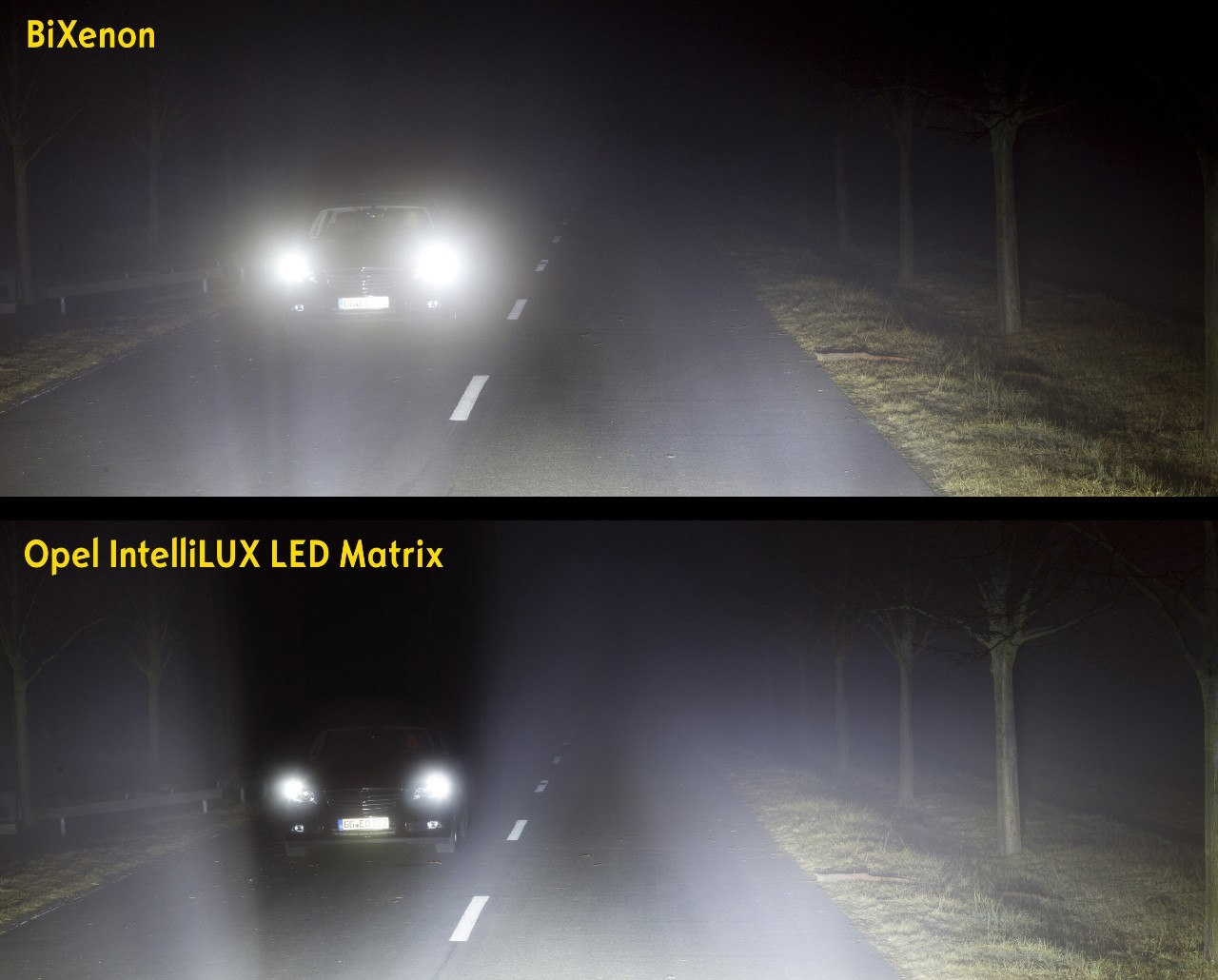 IntelliLux  LED